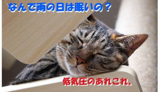 雨の日はなぜ眠いのか?【原因は低気圧?】